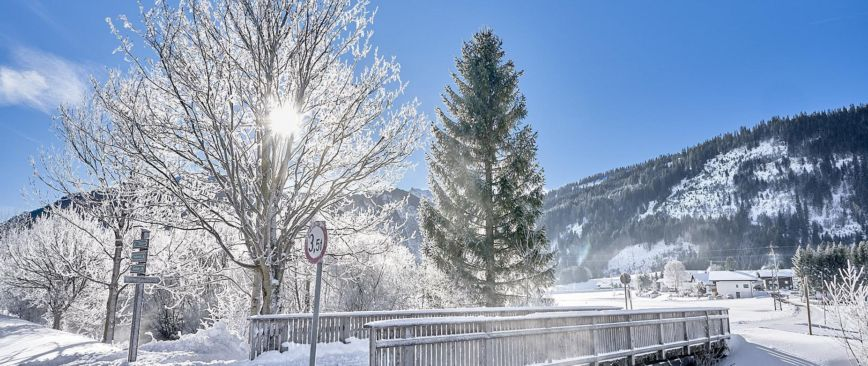 VIDEO Winter im Tannheimer Tal