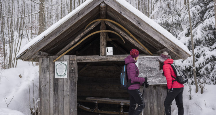 winterwandern_reutte_p.neusser_203