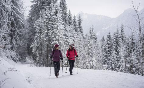 Winterzauber in den Bergen